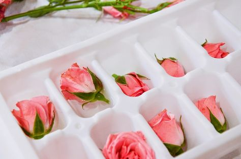 Easy and romantic DIY for Valentines day or Anniversaries - Rose Ice cubes Champagne Birthday, Champagne Party, Flavored Ice Cubes, Party Food Platters, How To Make Rose, Wedding Cake Roses, Infused Water Recipes, Sweet 16 Birthday, Bridal Shower Rustic