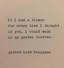 cute love quotes for her #lovequotes