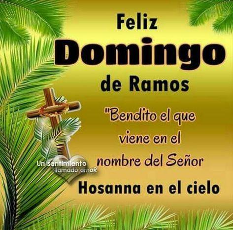 Sign In Feliz Domingo De Ramos Buenos Dias Feliz Domingo Domingo De Ramos