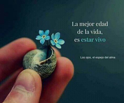 #frases #citas #positividad #inspiracion #conocermemas