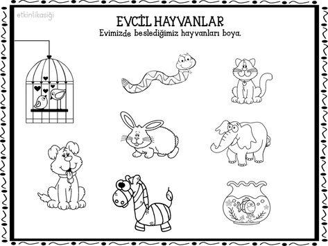 Evcil Hayvanlar Hayvanlar Boyama Sayfalari Hayvan