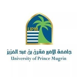 متابعات الوظائف جامعة الأمير مقرن تعلن عن توفر وظائف ادارية شاغرة وظائف سعوديه شاغره University Job Pie Chart
