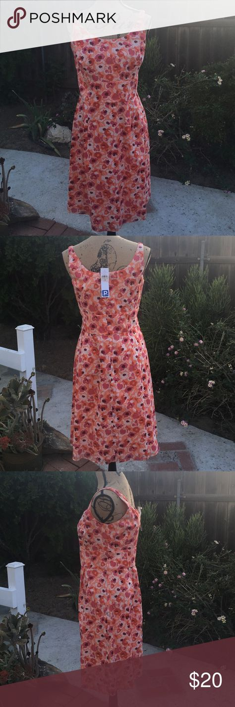 Ann Taylor Loft Sleeveless Dress Brand new, with tags, sleeveless dress from Ann Taylor Loft! This dress has no stains and no tears! Dress and lining are 100% cotton there is a zipper on back 😊 perfect for the spring or summer 🌞 Ann Taylor Dresses