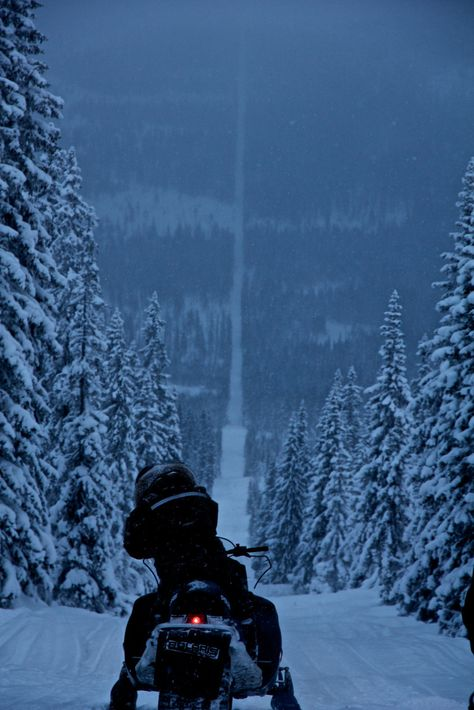 This is the border between Norway and Sweden. Riding a snowmobile for fun is illegal in Norway, but legal in Sweden. Oh The Places You'll Go, Places To Travel, Voyage Suede, Lappland, Ushuaia, Lofoten, Winter Scenes, Snow Scenes, Wonders Of The World