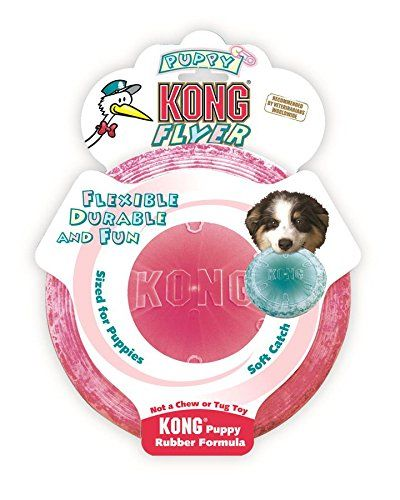 Dog Chew Toys Kong Puppy Flyer Dog Toy Colors May Vary Find