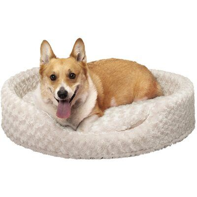 Ernie Ultra Plush Oval Pet Pillow With Removable Cover Size X Large 30 L X 27 W Color Cream Plush Pet Bed Dog Bed Large Oval Dog Bed