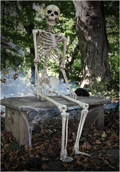 5 Sebab Kenapa Startup Anda Gagal   Halloween skeletons, Halloween ...