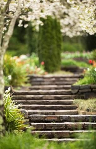 Image Result For Garden Blur Background Hd Blur Background Photography Photo Background Images Blur Photo Background