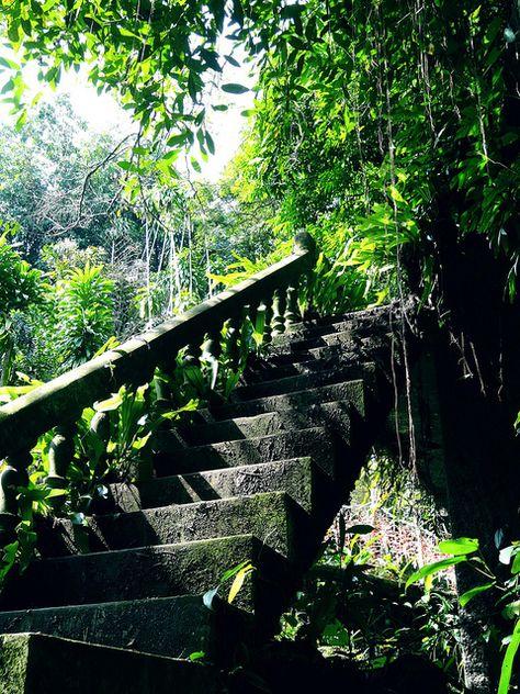 Koh Samui - Magic Garden | Flouk Dupont