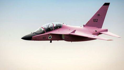 Les Rafale indiens porteront la dénomination Rafale EH et Rafale DH    Military aircraft, Indian air force and Air force