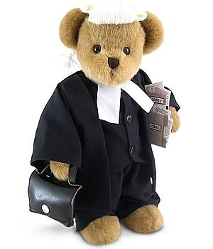 Image result for stuffed animal lawyer