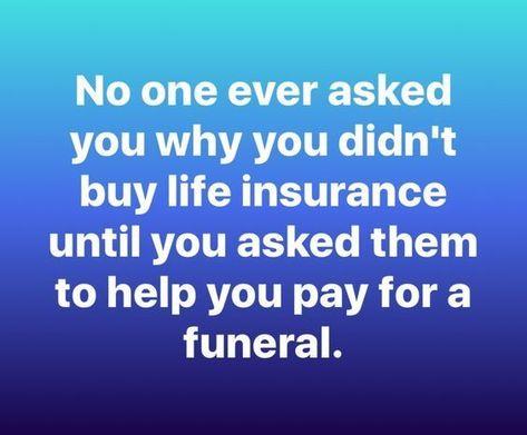 Do You Need A Life Insurance I Can Help Dan At Safari