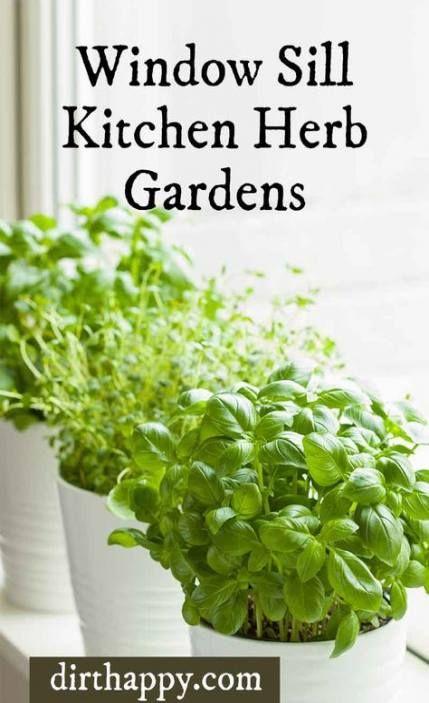15 Ideas Kitchen Window Sill Herbs Garden Ideas Herb Garden In Kitchen Growing Basil Indoors Kitchen Herbs