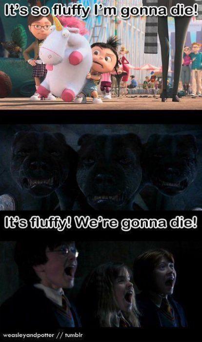 Ha    Ha     Ha Fluffy needs to capatilizes
