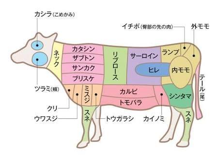 牛肉 部位 の画像検索結果 牛肉 部位 肉 部位 雑学