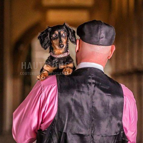dogsofdallas Daddy's little princess...