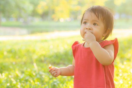مرحلة التسنين Children Pacifier