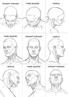 Human Head Sheet By Hoelho In 2020 Anatomy Art Anatomy Sketches Human Figure Drawing