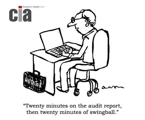 Audit Cartoon  Discrepancies  Audit Cartoons