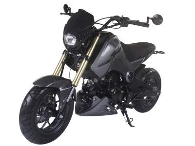 Ice Bear Fuerza 125 Motorcycle 125cc For Sale Pocket Bike