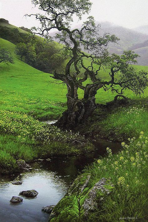 """""""Age & Innocence"""" - by Adair Payne Fantasy Landscape, Landscape Art, Landscape Paintings, Landscape Photography, Nature Photography, Mother Earth, Mother Nature, Beautiful World, Beautiful Places"""