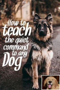 Stop Dog Jumping And Service Dog Training Check The Image For
