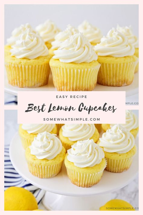 Cake Mix Lemon Cupcakes These lemon cupcakes are the best you'll ever eat! Made with a box of cake mix, this cupcake recipe is super easy to make and they taste amazing! Cake Mix Cupcakes, Lemon Cupcakes, Cupcake Cakes, Lemon Cupcake Recipe Easy, Best Cupcakes, Fruity Cupcakes, Cupcake Mix, Ladybug Cupcakes, Amazing Cupcakes