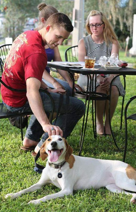 Many Tallahassee eateries offer dog-friendly dining options