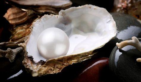L'huître, une trésor pour la santé !  http://www.naturemania.com/article_huitre.html