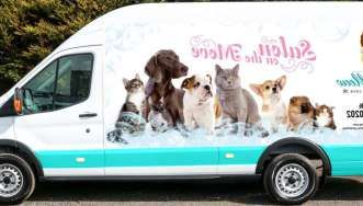 Where To Find Mobile Dog Groomers Near Me Dogs Animals Pets