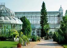Die Schonsten Garten Von Berlin In 2020 Botanischer Garten Berlin Garten Botanischer Garten
