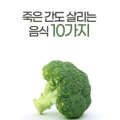 죽은 간도 살리는 음식 9가지 건강식품 좋은 음식 건강 음식