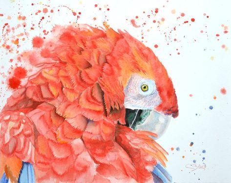 Perroquet A L Aquarelle Comment Peindre Peinture Oiseau Les Arts