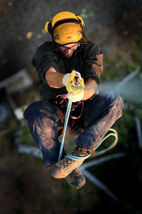 Tree climbing? :)  Petzl Climbing Gear (photo by Petzl marketing director, John Evans).