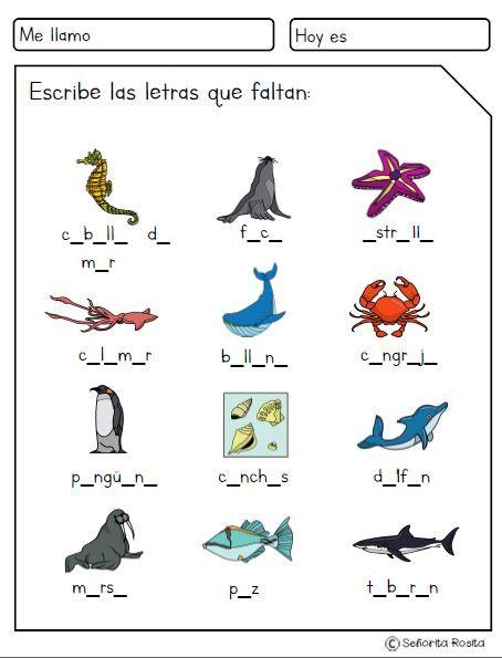 Pin On Aprende Español