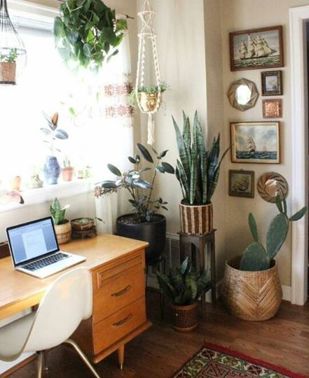 cottage office. Ally Walsh Of Canyon Coffee\u0027s Santa Monica Home | Santa, Coffee And Interiors Cottage Office
