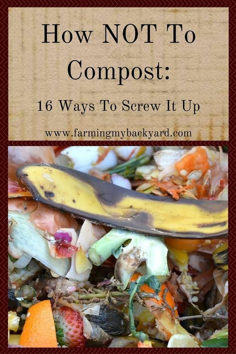 Garden Composting How NOT to Compost: 16 Ways To Screw It Up - Farming My Backyard - Everyone says compost is so easy, but some of us still manage to screw it up. Here's how NOT to compost, with sixteen proven ways to fail. Compost Soil, Composting At Home, Garden Compost, Worm Composting, Hydroponic Gardening, Garden Soil, Hydroponics, Container Gardening, Organic Gardening