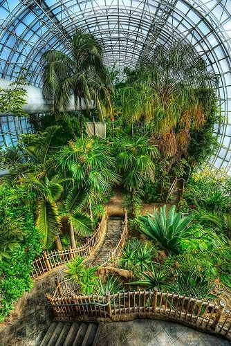 Crystal Bridge Tropical Conservatory In