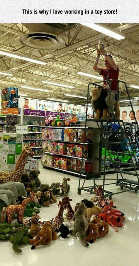Imagine the preparations when the guy started to pick up the stuffed animals :)