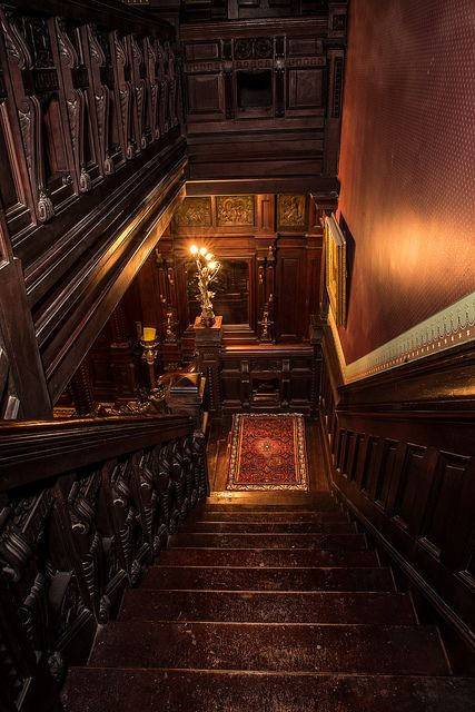 28 super Ideas for stairs luxury stairways Victorian Interiors, Victorian Homes, Victorian Architecture, Victorian Stairs, Architecture Exam, Ancient Architecture, Victorian Gothic, Interior Architecture, Gothic Interior