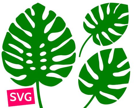 Set of 3 Tropical Monstera Leaf SVG files for Cricut & Silhouette. SVG Monstera leaves clipart to print or cut. You can use the Monstera SVG templates to make tropical wall decor, Jungle / Hawaii style cards and invitations etc. This SVG bundle is perfect to make a tropical