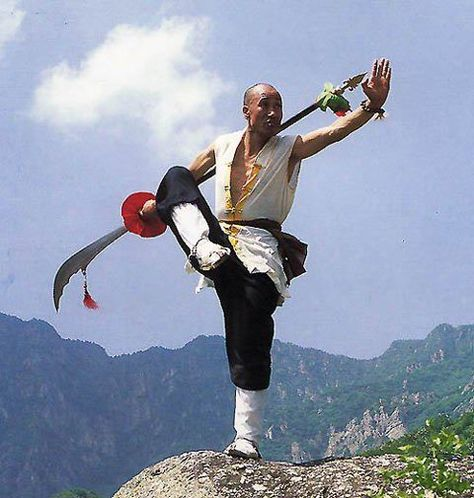 Chinese Martial Arts | Wudang Tai Chi Kung Fu
