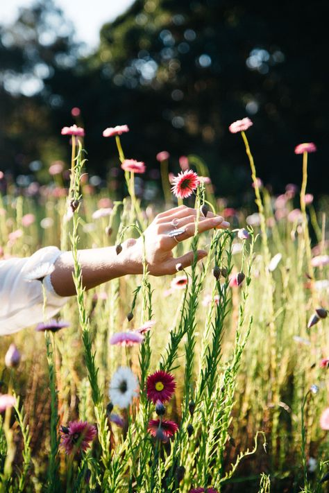 Tree Of Life Blog: One with the Wildflowers, photography by Britt Murphy, muse Chelsey Rouen.