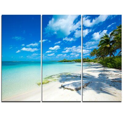 Design Art Tropical Beach With Palm Shadows Graphic Art On Wrapped Canvas In 2020 Design Art Art Graphic Art