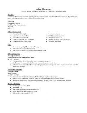 Internship   3-Resume Format   Internship resume, Sample ...