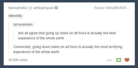 The horrifying experience. | 33 Really Funny Tumblr Posts That Are What You Need Right Now