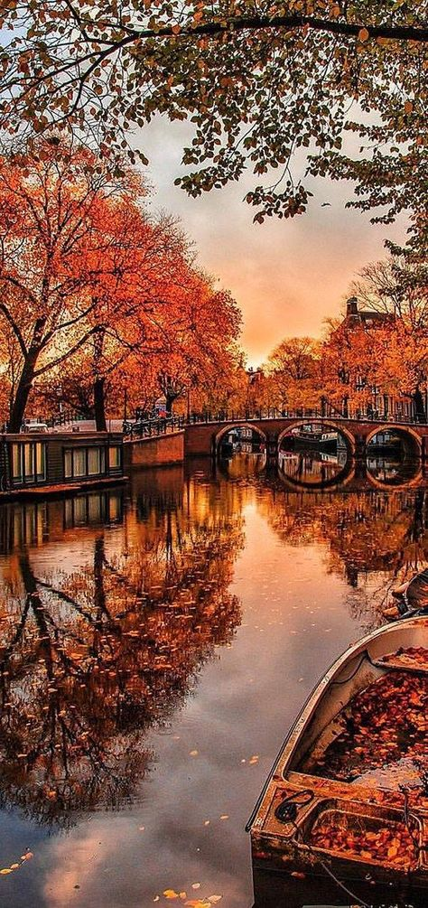 Amsterdam in the Fall | Kardinal Melon | 40 Stunning Images of Fall from Home Decorating to Tablescapes, Outdoor Decorating, Autumn Forests and More.