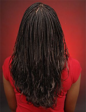 Micro Pony Braids  check out images http://www.hairbraidingnetwork.com/photo/150/neat-micro-braids-with-extensions/