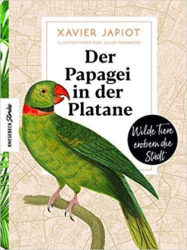 Der Papagei In Der Platane Wilde Tiere Erobern Die Stadt