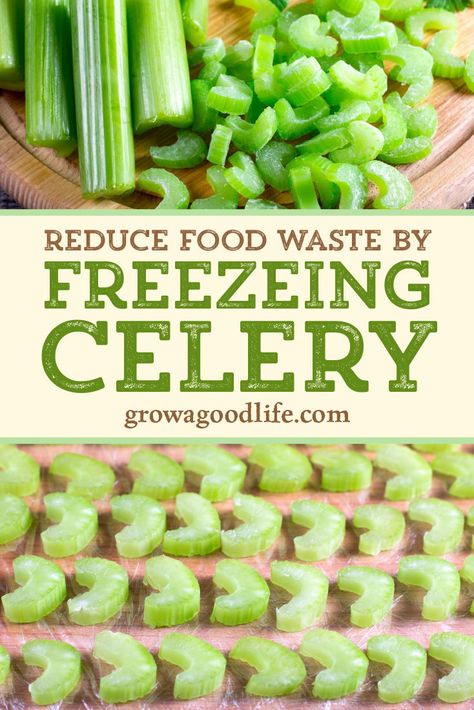 Reduce Food Waste by Freezing Celery